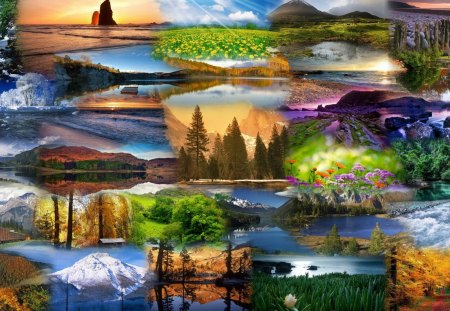Portraits of Nature - beauty, panorama, forest, spring, sunsets, summer, trees, nature, fall, winter, sea, seasons, autumn, water falls, colors, light, mountains