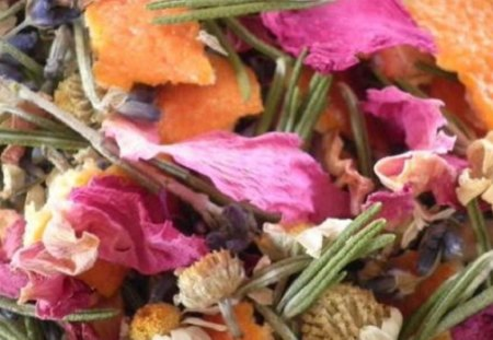 Nature's Potpourri - natural, colorful, simple, nature, photo