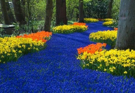Floral River of Blue - colorful, orange, flowers, yellow, river, holland, blue