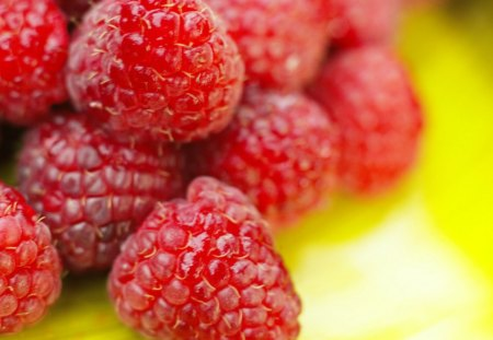 Spring is here - eating, photography, fruits, wallpaper, raspberry, abstract, hd, nature