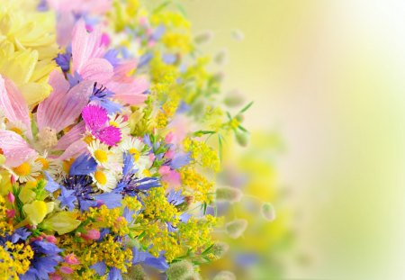 Beautiful Flowers - colorful flowers, artistic, pretty, colorful, summer time, cg, yellow, beautiful, drops, photography, yellow flowers, flowers, beauty, pink, pink flowers, lovely, drop, colors, daisies, bouquet, summer, nature, petals, daisy