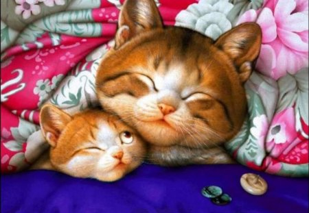GOOD NIGHT ! - ktten, good night, sleep, cats