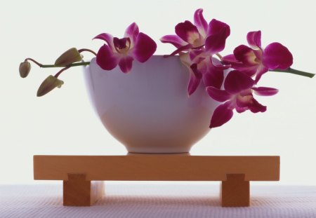 Heart of Healing♥ - table, floral arrangement, healing, orchids, electric pink, purple, entertainment, love, heart, forever, fashion, white, bowl