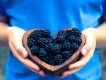 *** Blackberries in the heart ***