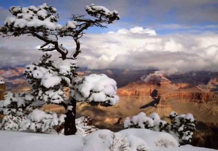 Snowy Canyons - snow, deserts, mountains, nature, canyons, winter