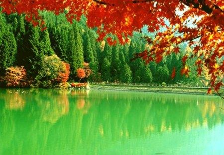 The Beauty Of Autumn -...