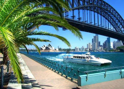 Sydney Harbour In All Its Glory