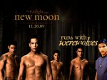 New Moon: Run with the Werewolves