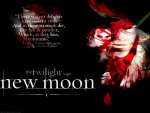 New Moon and Shakespeare