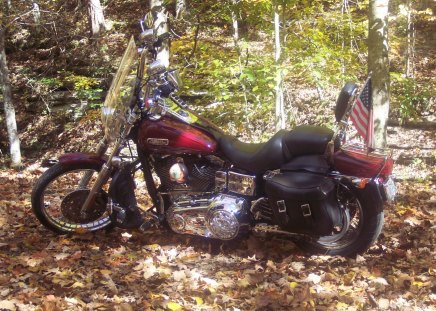 my Glide - hot, bike, h-d, motorcycle