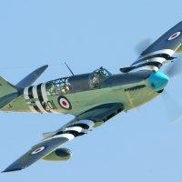 Fairey Firefly Mk. 5