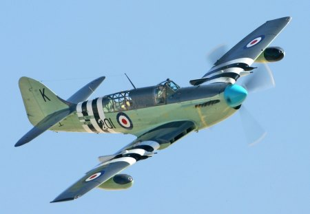 Fairey Firefly Mk. 5 - interceptor, fairey firefly mk 5, fighter, royal navy, fleet air arm