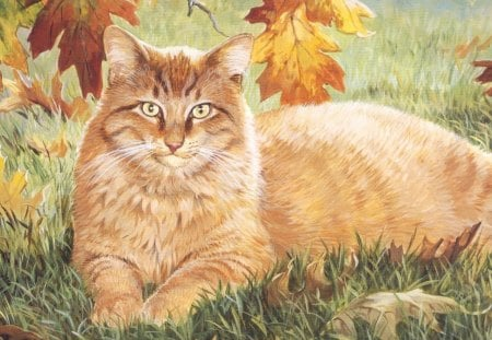 ABRICOT THE CAT - fall, autumn, leaves, cat