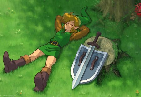Image result for link  sleeping