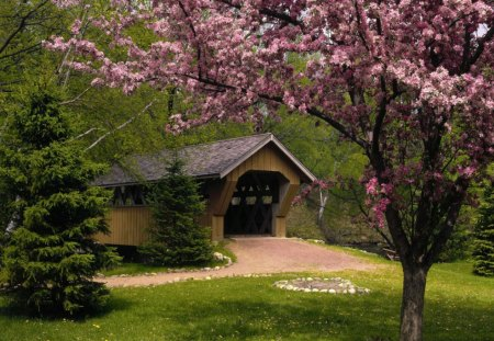 Covered Bridge, Wisconsin - architecture, forest, grass, trees, wisconsin, blossom, daylight, bridge, evergreens, dirt, path, day, nature, cherry, wood