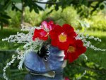 *** Fantastic blue shoe with red poppies ***