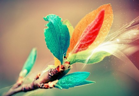 *** Twig  with colorful leaves *** - abstrakcja, kolorowa, fantazy, galazka