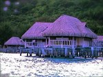 PURPLE BEACH HOUSES
