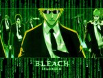 Bleach in the Matrix
