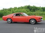 Ford Mustangs 1965 1972 Special Editions