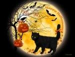 ♥     Happy Halloween Cat     ♥