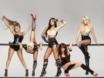 Hot Pussycat Dolls
