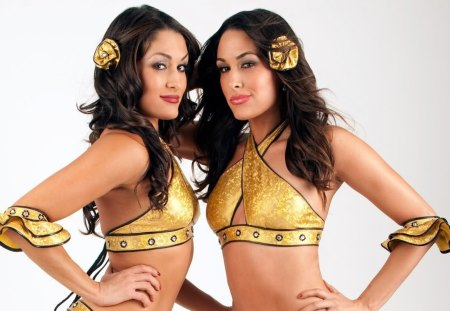 The Bella Twins 3 Wrestling Sports Background
