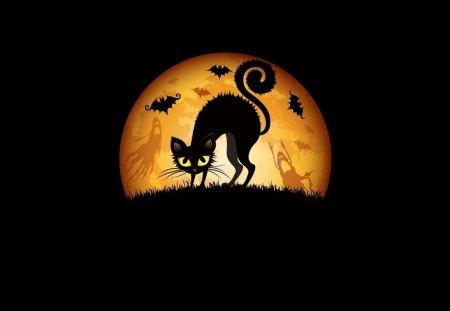 Halloween kitty (meaww) - kitty, 1080p, holiday, cat, halloween, moon, dark, black