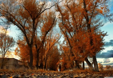 Scenic Armenia - autumn, sky, building, nature, landscape, trees, leaves, armenia