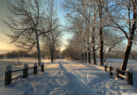 Beautiful Snowy Country Road