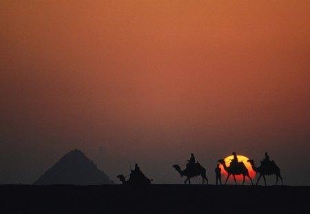 Camel Caravan In The Desert Deserts Nature Background