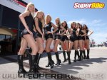 MOTO GP Girls