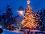 Christmas Tree and Clock Tower