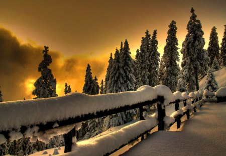Winter Sunset - fence, beautiful, sunset, clouds, snowy, splendor, beauty, winter sunset, amazing, lovely, view, sunlight, winter time, sky, trees, winter, tree, snow, mountains, peaceful, nature, landscape