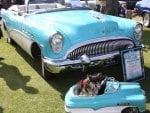 1954 Buick Road master convertible