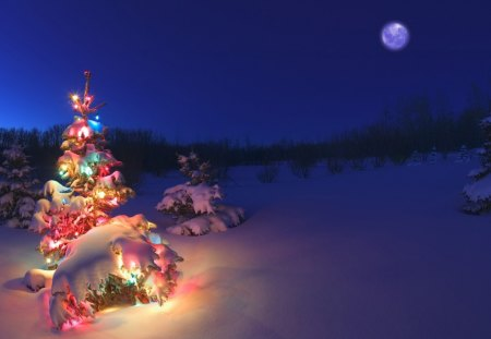 A Snowy Christmas - lights, winter, christmas, snowy