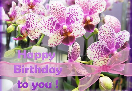 ♥     ❀♥❀ Orchid Birthday Card ❀♥❀  ♥ - birthday, bow, flowers, purple, orchids, nature, flower