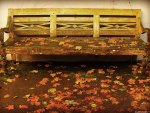 ♥     Autumn Park Bench      ♥