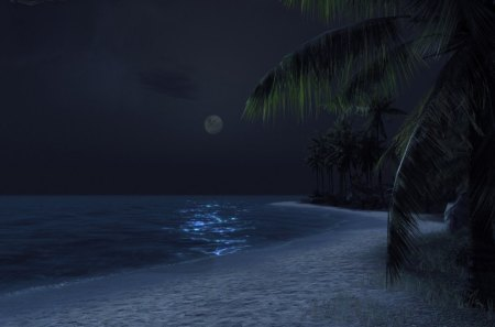 MOON - ocean, beach, sand, sky, night, palm trees, moon