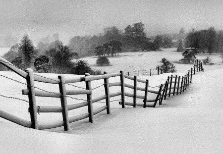 Black white winter scene winter nature background wallpapers on desktop nexus image 1236213 - Winter farm scenes wallpaper ...