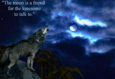The Moon Is A Friend - fantasy, moon, wolf, abstract, animal