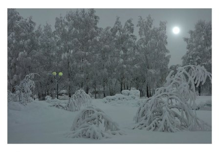 Snow covered park - moon, snow, ice, nature, park, trees, lights, other
