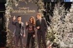 Breaking Dawn Part 2 - Stars