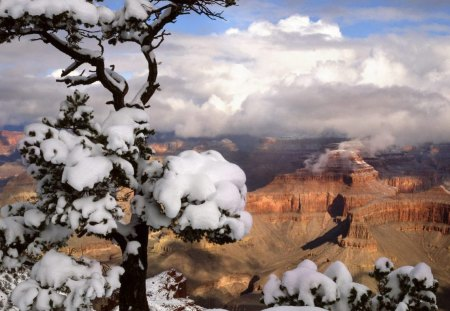 Winter In The Grand Canyon Mountains Nature Background