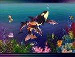 Under The Sea 1200x800