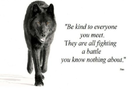Be Kind - fantasy, wolf, plato, abstract, animal