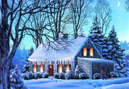 Frozen house - house, cottage, cabin, villa, trees, lights, winter, cold, snow, path, village, nature, branches, frozen, blue, frost