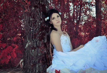 Beautiful Bride - autumn, bride, woman, brunette, tree, photography, girl, love, beauty, nature