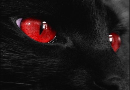 Evil Red Anime Eyes Anime Evil Red Eyes Red Eyed