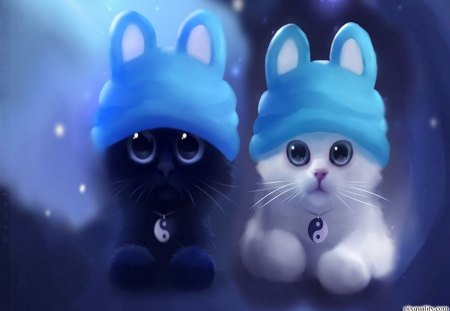 'Cats with fortune at Christmas' - pretty, festival, black and white, adorable, xmas and new year, frosty, couple, snowcats, blue, yin yang, hats, lovely, holiday, necklace, celebration, colors, love four seasons, abstract, winter, happy, cute, shining, cats, kitten, white, celebrations